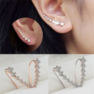 Elegant Cubic Zirconia Crystal Hook Earrings 1 Pair-min